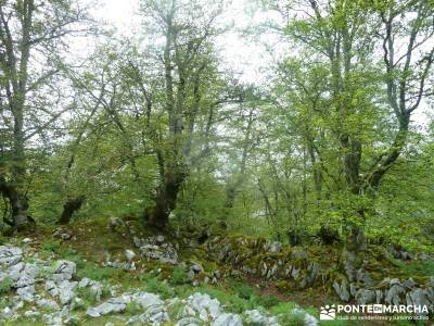 Descenso Sella;Lagos Covadonga-Picos Europa; cotos valdesqui valle de lozoya madrid